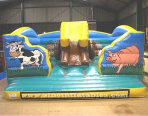 Animal inflatable combo game