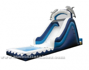 inflatable dolphin water slide with pools
