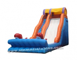 giant dolphin inflatable slide