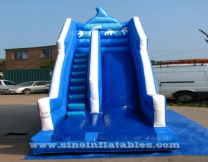 Seagull blue wavy inflatable slide