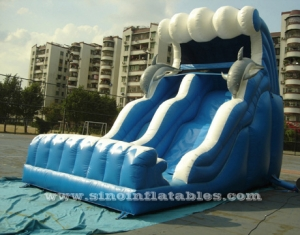 Inflatable Water Slide Party With Pool