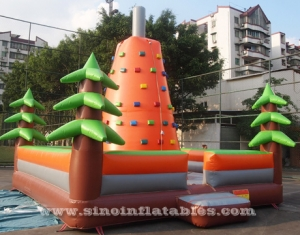 kids inflatable rock climbing wall