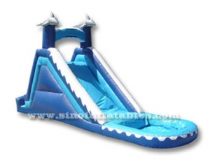 dolphin kids inflatable water slide